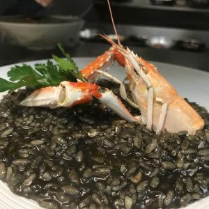 Black ink risotto with scampi